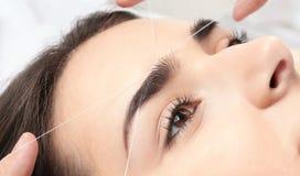 Young woman having professional eyebrow correction. Procedure in beauty salon, closeup royalty free stock photo
