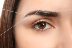Young woman having professional eyebrow correction. Procedure, closeup royalty free stock photos