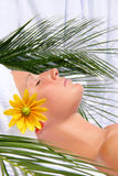 Young woman having a spa day Stock Images
