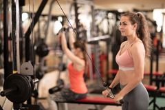 Young woman having workout in gym Stock Image
