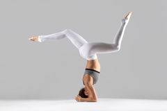 Young woman in headstand pose, grey studio background Stock Image