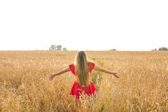 Young woman with her arms wide spread is enjoying in the sunny summer or autumn day, rear view Royalty Free Stock Image