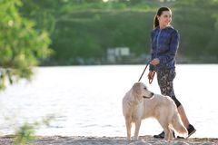 Young woman with her dog together on beach. Pet care. Young woman with her cute dog together on beach. Pet care Stock Image