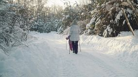 Mom and daughter doing nordic walking in the suburbs in winter. stock footage