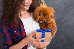 Young woman and her dog celebrate birthday. Surprise for favorite pet. Cute poodle puppy dog wearing birthday hat getting holiday gift from owner, copy space stock photo