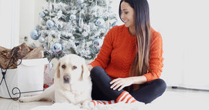 Young woman and her dog celebrating Christmas Royalty Free Stock Image