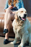 Young woman and her dog golden retriever in the park Royalty Free Stock Photography
