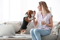 Young woman with her dog. At home Stock Images