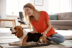 Young woman with her dog. At home Stock Photography