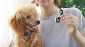 Young woman with her dog plays and twists the hand spinner. stock footage