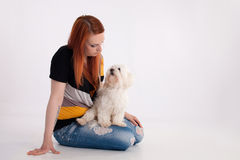 Young woman with her dog. Young redhead woman with her white Maltese dog in studio Royalty Free Stock Images