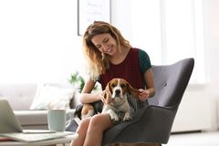 Young woman with her dog sitting in armchair. At home Stock Photography