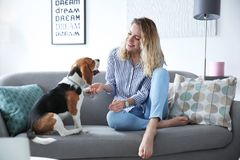 Young woman with her dog on sofa. At home Royalty Free Stock Photo