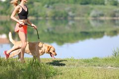 Young woman and her dog spending time together. Outdoors. Pet care Royalty Free Stock Photography