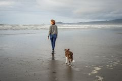 Young woman and her dog walking on a California beach stock image