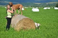 Young woman with her dogs on green meadow, the brown dog stands on roll of hay Stock Photo
