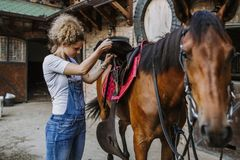 Young woman with her horse. Young woman taking care of her beautiful horse royalty free stock photos