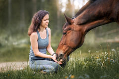 Young woman  with her horse. Walking on summer field Royalty Free Stock Image
