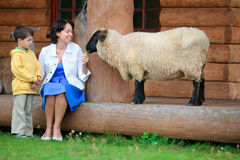 Young woman and her little son feeding a sheep Royalty Free Stock Photo