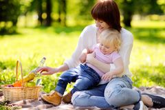 Young woman and her little son having a picnic Stock Images