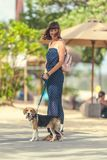 Young woman with her lovely beagle dog in the park of Bali island, Indonesia. Stock Image