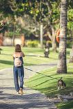 Young woman with her lovely beagle dog in the park of Bali island, Indonesia. Stock Photography