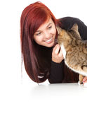 Young woman with her lovely grey cat Royalty Free Stock Images