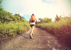 Young woman hiker hiking Royalty Free Stock Photo