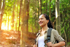 Young woman hiker in tropical jungle Royalty Free Stock Photo