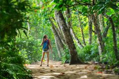 Young woman hiker. Stands in the tropical lush forest and looks at the trees. Tilt shift effect applied on the edges royalty free stock photography