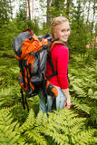 Young woman hiking in the forest. Royalty Free Stock Image
