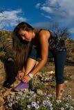 Young woman hiking Granite Mountain in Arizona Stock Photography