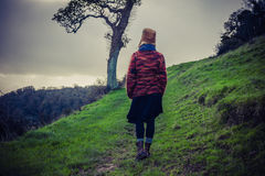 Young woman hiking on hill by tree Stock Photography