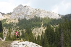 Young woman hiking Stock Image