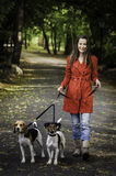 Young woman and his dogs. Woman in red holding two cute dog in an autumn park Stock Image