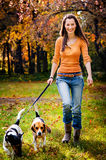 Young woman and his dogs Stock Photos