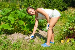 Young Woman With Hoe Stock Photo