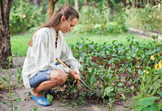 Young woman with hoe working in the garden. Bed Stock Photography