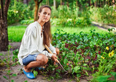 Young woman with hoe working in the garden bed Royalty Free Stock Photo