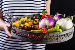 Young woman holding a basket full of veggies Stock Photos