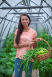 Young woman holding a basket of greenery and onion Royalty Free Stock Photos