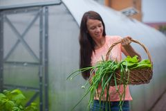 Young woman holding a basket of greenery and onion Stock Images