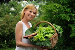Young woman holding basket with vegetable. An image of young woman holding basket with vegetable Royalty Free Stock Image