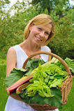 Young woman holding basket with vegetable Royalty Free Stock Photo