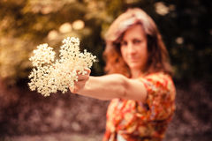 Young woman holding a bunch of elderflowers Stock Photos