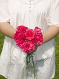 Young woman holding carnation flower. Midsection of a young woman holding carnation flower Royalty Free Stock Photo