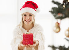 Young woman holding a Christmas present Royalty Free Stock Image