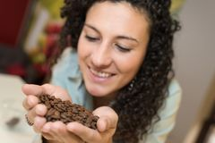 Young woman holding coffee beans in hand. Young woman holding some coffee beans in her hand Royalty Free Stock Photography