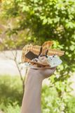 Young woman holding delicious ice cream with waffle during a picnic at nature. Summer food concept. Young adult eating yummy ice. Delicious waffle with ice-cream royalty free stock photo