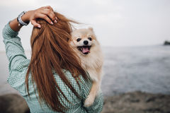 Young woman is holding dog outdoors Stock Image